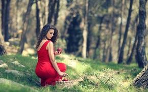 Picture forest, basket, apples, dress, brunette