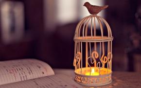 Picture light, background, the inscription, widescreen, bird, Wallpaper, mood, candle, cell, flashlight, lantern, shadows, wallpaper, notebook, …