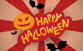 Picture Halloween, Halloween, texture, texture, terrible, bats, creepy, creepy, scary, evil pumpkin, bats, evil pumpkins