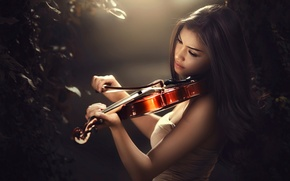 Wallpaper bokeh, bow, violin, violinist