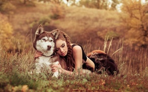 Picture field, nature, Girl, dog, friends