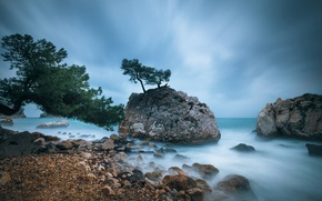 Picture sea, beach, trees, stones, rocks