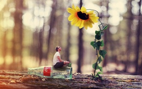 Picture flower, bottle, the situation, guy