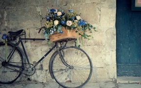 Picture BIKE, FLOWERS, WALL