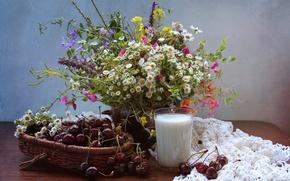 Picture summer, cherry, glass, bouquet, milk, still life, wildflowers
