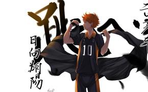 Picture anime, art, guy, volleyball, Haikyuu, Hinata,