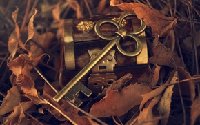 Picture autumn, leaves, metal, key, box, fallen