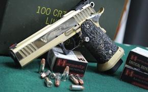 Picture gun, Eagle, cartridges, STI 1911, semi-automatic