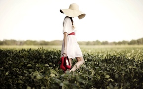 Picture girl, summer, field, hat, mood, red shoes