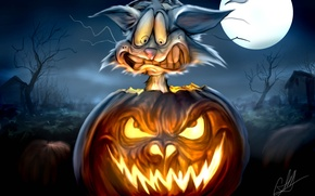 Picture night, the moon, monster, Cat, pumpkin, horror