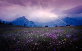 Picture field, the sky, light, landscape, flowers, mountains, Meadow, houses, lilac