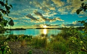 Picture NATURE, GRASS, The SKY, CLOUDS, GREENS, POND, TREES, LAKE, DAWN