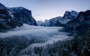 Picture winter, forest, trees, valley, CA, California, Yosemite national Park, Yosemite National Park, the Sierra Nevada, ...