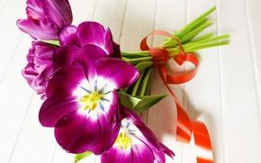 Picture flowers, bouquet, tape, tulips, tulips, purple