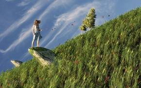 Wallpaper grass, girl, nature, rock, the wind, stone, Maki, petals, hill, art, slope