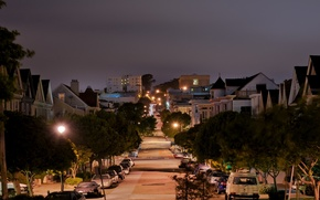 Picture night, lights, street, california, CA, night, san francisco, street, pierce street