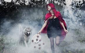 Wallpaper wolf, tale, girl, installation