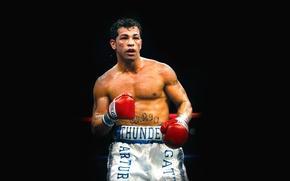 Picture Boxing, black background, boxer, boxing, Arturo Gatti, Arturo Gatti