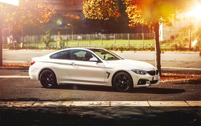 Picture autumn, BMW, white, 4 Series, F32, 420d