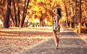 Picture autumn, leaves, girl, Park, dress, legs, the beauty, Anton Pechkurov