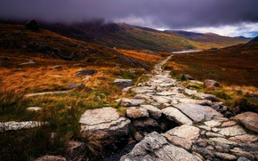 Picture autumn, grass, clouds, nature, fog, stones, UK, path, yellow, Wales, Great Britain, Wales, the Peninsula