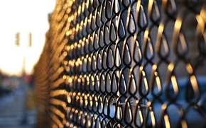 Picture the sun, macro, background, mesh, Wallpaper, the fence, dal, the fence, wallpapers