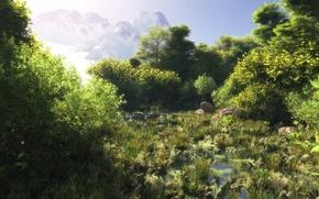 Wallpaper water, greens, mountains, art, grass, swamp, forest