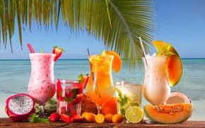 Picture sea, berries, Palma, cocktail, tube, citrus, mint