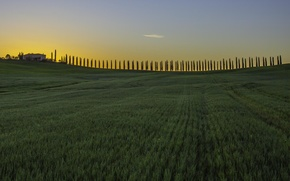 Picture field, the sky, clouds, trees, sunset, house, Italy, twilight, farm, Tuscany