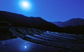 Wallpaper the moon, rice field, Japan, night, Moon, Japan