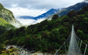 Picture forest, mountains, bridge, nature