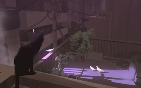 Picture roof, light, wire, shadow, plants, post, fence, ambush, pigeons, black cat, art, Snatti89