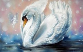 Wallpaper Swan, fairy, wings, white, water, painting