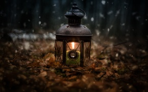 Picture forest, snow, nature, mood, fire, holiday, lantern, different, candle holder, rojdestvo