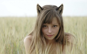 Picture cat, cosplay, blonde