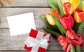 Picture flowers, gift, spring, tulips, bow, March 8, tulips, gift