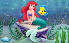 Wallpaper sea, algae, cartoon, crab, mermaid, Disney, Ariel, Ariel, Disney, Little mermaid, Little mermaid, sunfish