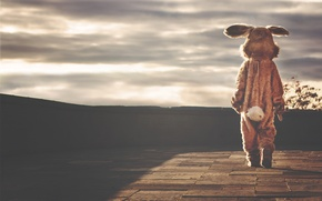 Picture sadness, loneliness, photo, hare, rabbit, costume