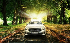 Picture Mercedes-Benz, The sun, Grass, Trees, Leaves, Car, Grass, Car, AMG, Sun, Trees, Class, Premium, CLA, …