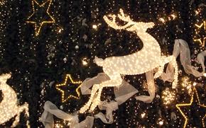 Picture decoration, lights, Deer