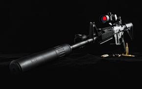 Wallpaper cartridges, sight, muffler, Southern Defense