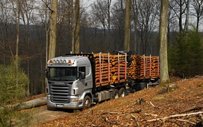 Picture forest, nature, truck, Scania R470, the truck
