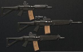 Picture gun, weapon, weapons, rifle, assault rifle, Sig Sauer 556, Sig Sauer, Swiss rifles