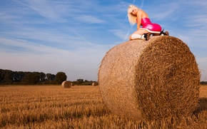 Picture field, the sky, ass, blonde, hay, ass, Susan Wayland, sky, field, blonde, hay
