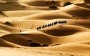 Picture the dunes, desert, caravan