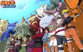 Picture game, Naruto, anime, ninja, asian, manga, shinobi, japanese, Naruto Shippuden, Son Goku, Kyuubi, jinchuuriki, live …