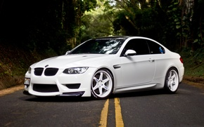 Picture white, bmw, BMW, white, drives, side view, e92