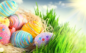Picture Easter, eggs, spring, Easter, colorful, colorful, happy