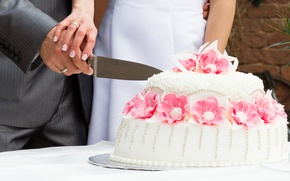 Picture the situation, cake, the bride, wedding, the groom, marriage