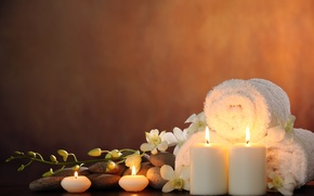 Wallpaper flowers, flowers, candles, Spa, candles, white Orchid, white Orchid, Spa stones, Spa stones, Spa